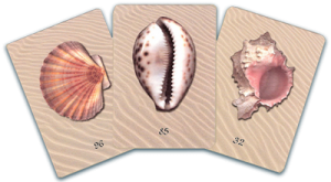 product-shell-cards