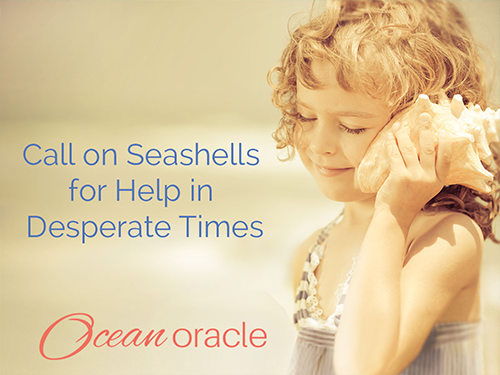 Call on Seashells for Help in Desperate Times