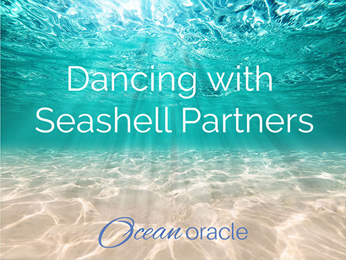 Dancing with Seashell Partners